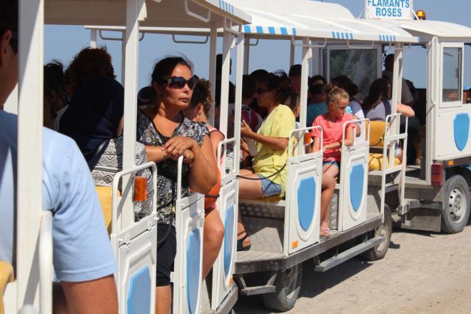 visite des salins en petit train